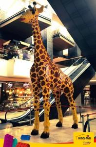 Legoland'in maskotu olacak zürafaya isim aranıyor